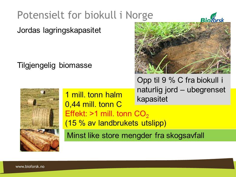 Potensielt for biokull i Norge