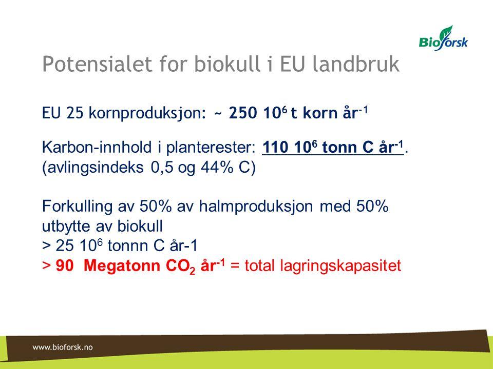 Potensialet for biokull i EU landbruk