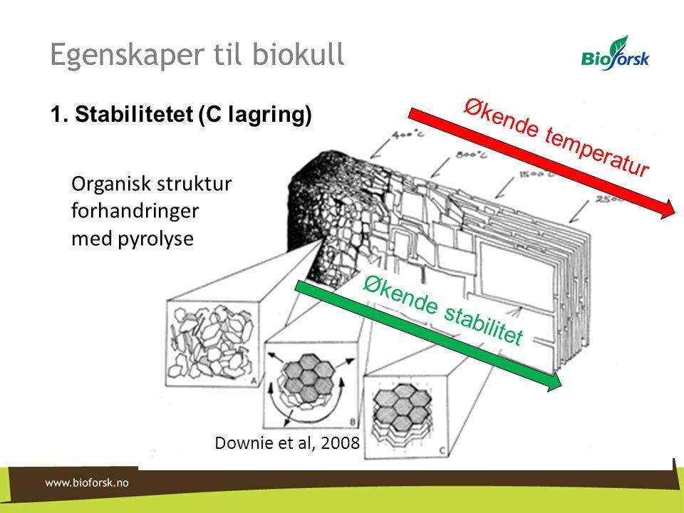 Egenskaper til biokull