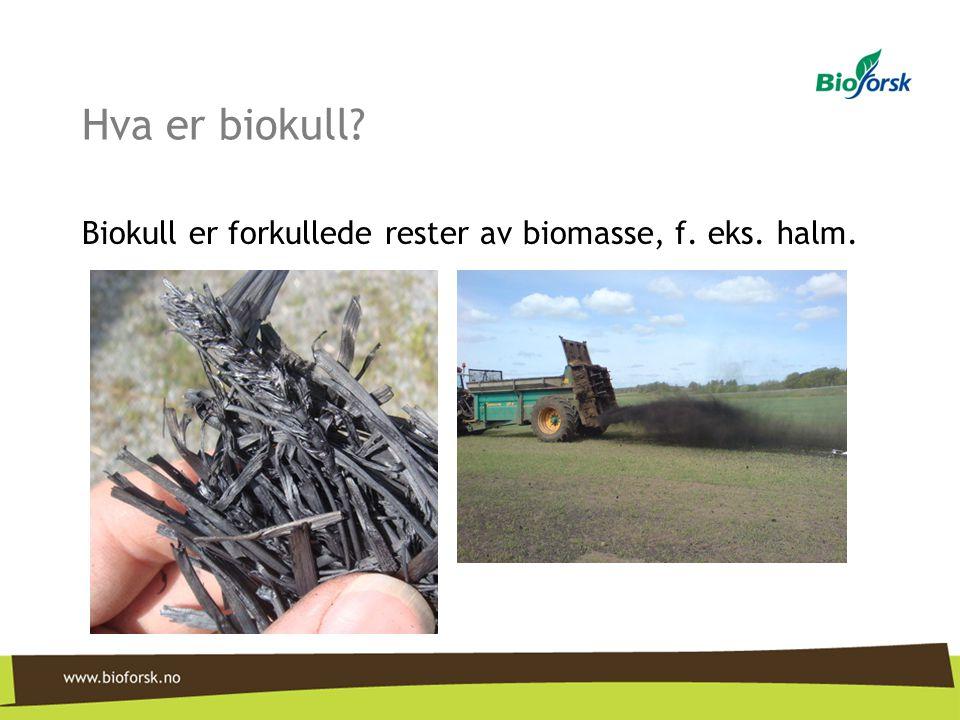 Hva er biokull Biokull er forkullede rester av biomasse, f. eks. halm.