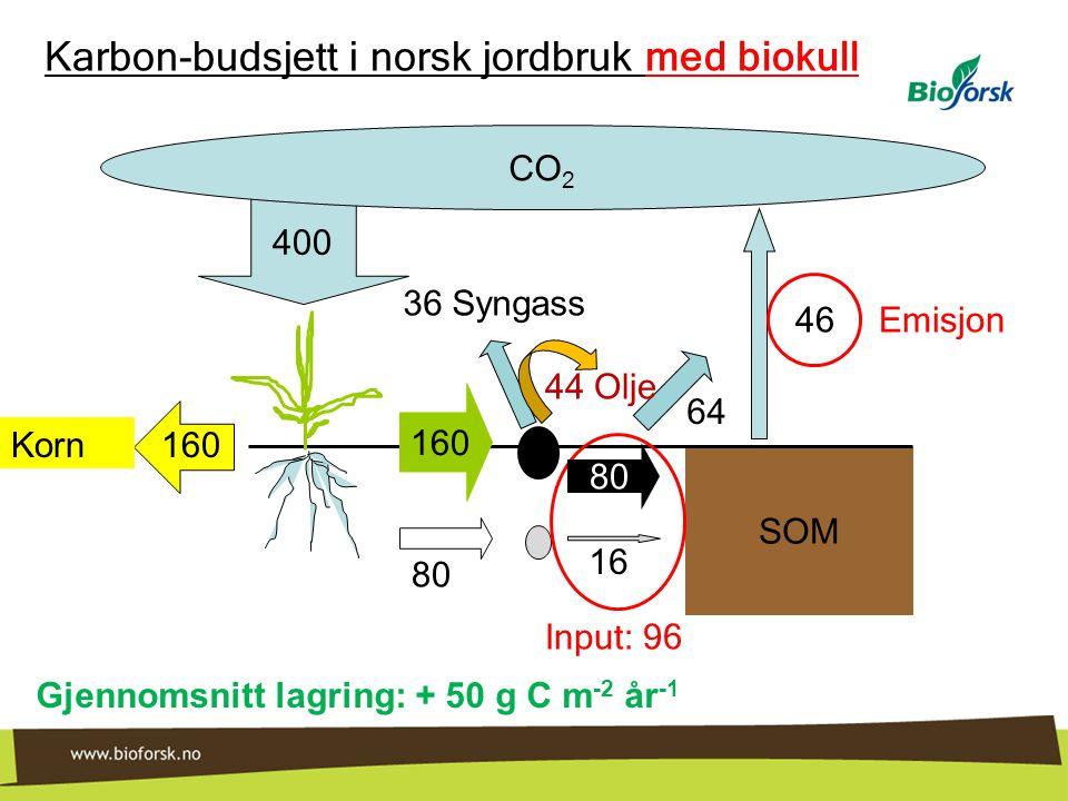 Karbon-budsjett i norsk jordbruk med biokull