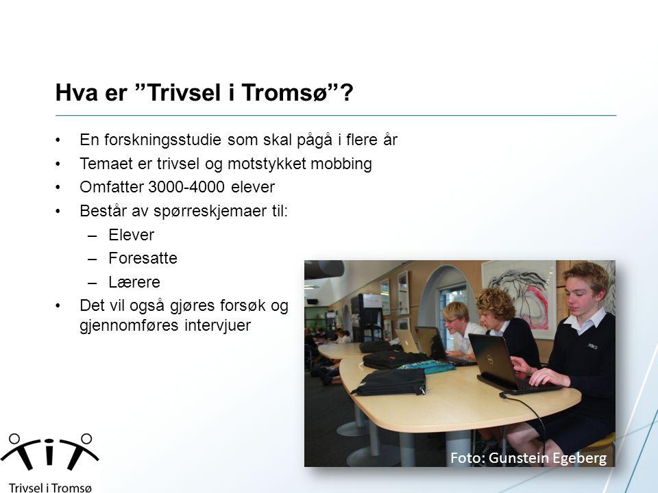 Hva er Trivsel i Tromsø