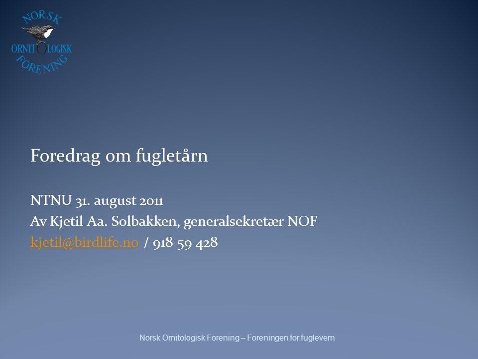 Foredrag om fugletårn NTNU 31. august 2011