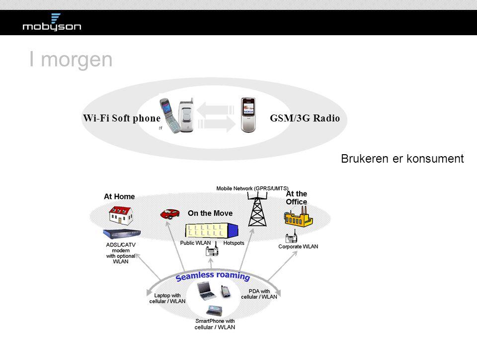 I morgen Wi-Fi Soft phone GSM/3G Radio Brukeren er konsument