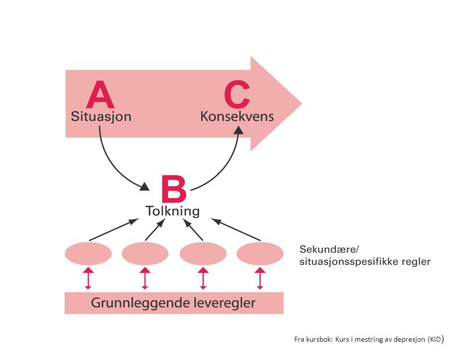 Fra kursbok: Kurs i mestring av depresjon (KiD)