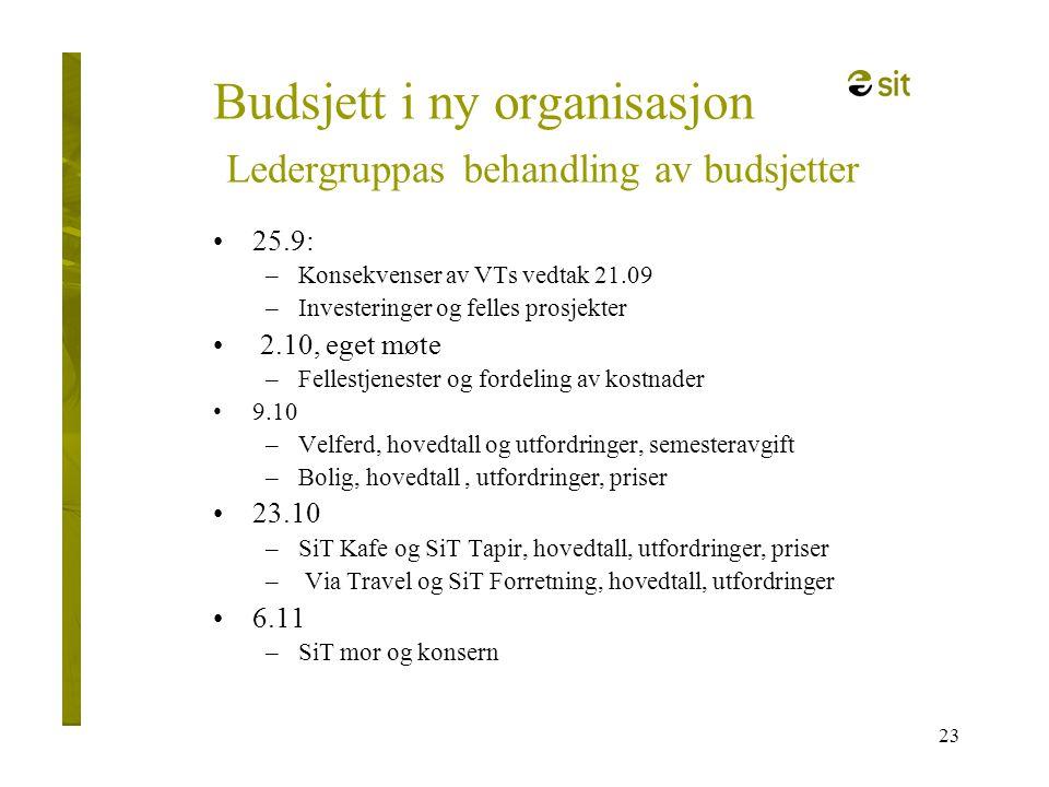 Budsjett i ny organisasjon Ledergruppas behandling av budsjetter