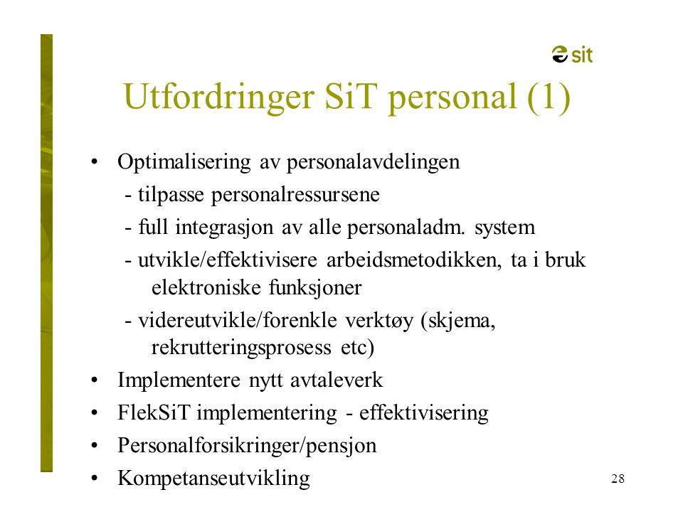 Utfordringer SiT personal (1)