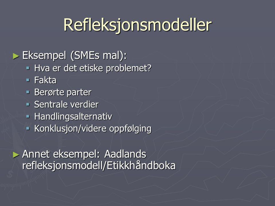 Refleksjonsmodeller Eksempel (SMEs mal):