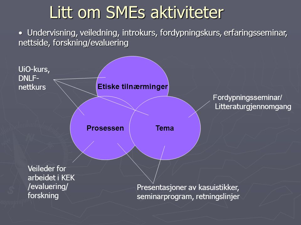 Litt om SMEs aktiviteter