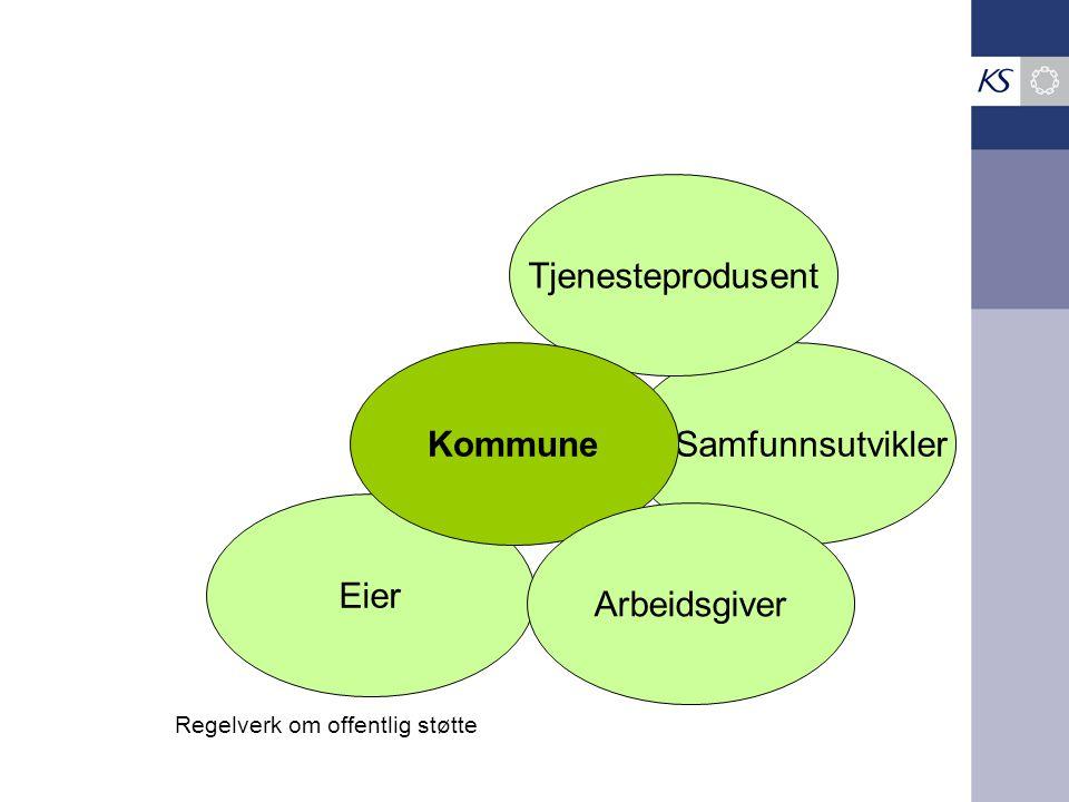 Tjenesteprodusent Kommune Samfunnsutvikler Eier Arbeidsgiver