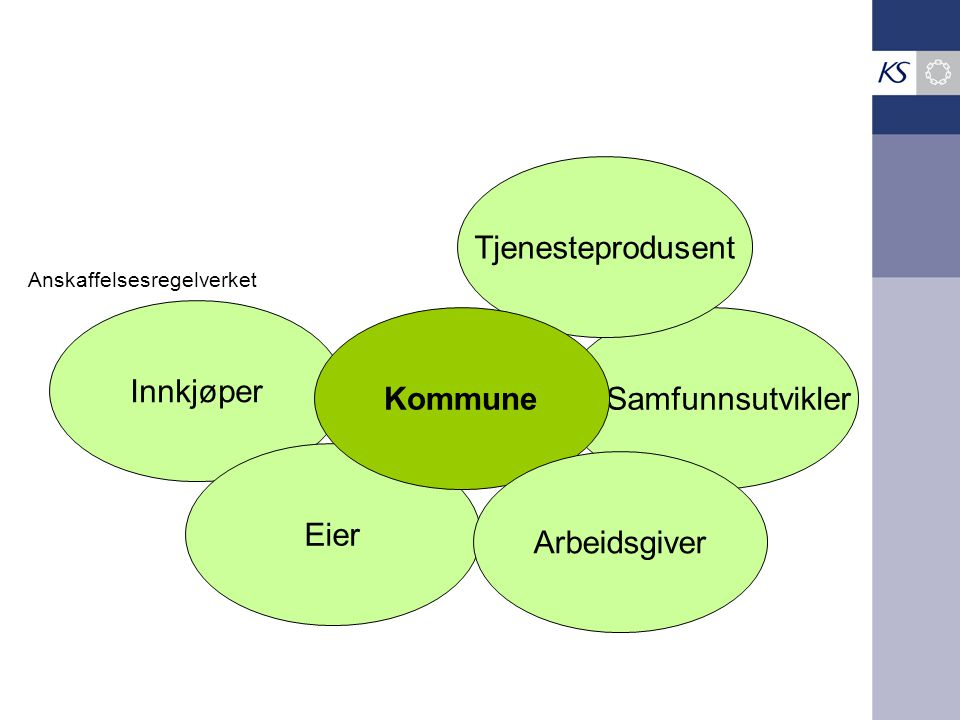 Tjenesteprodusent Innkjøper Kommune Samfunnsutvikler Eier Arbeidsgiver