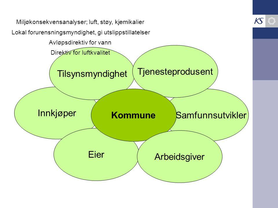 Tjenesteprodusent Tilsynsmyndighet Innkjøper Kommune Samfunnsutvikler