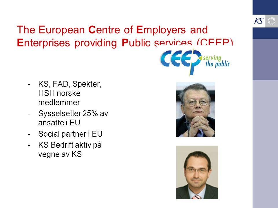 The European Centre of Employers and Enterprises providing Public services (CEEP)