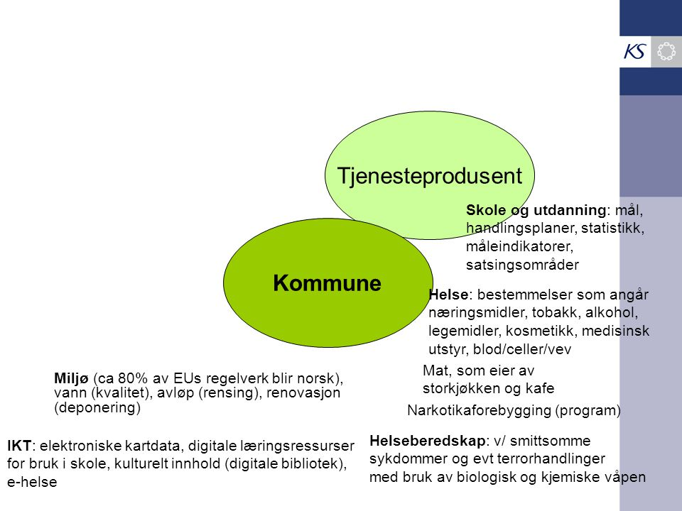 Tjenesteprodusent Kommune Skole og utdanning: mål,