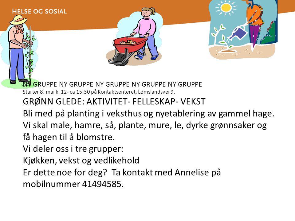GRØNN GLEDE: AKTIVITET- FELLESKAP- VEKST