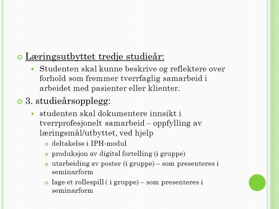 Læringsutbyttet tredje studieår: