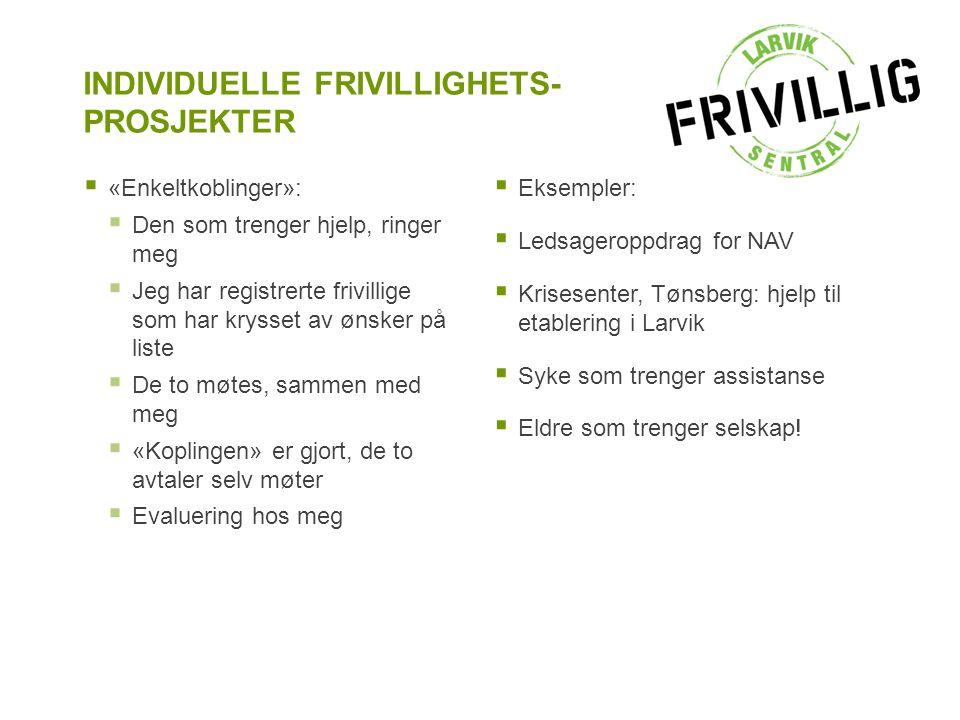 INDIVIDUELLE FRIVILLIGHETS-PROSJEKTER