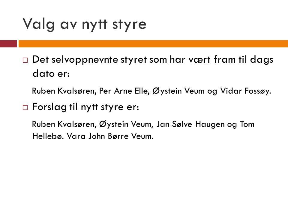 Valg av nytt styre Det selvoppnevnte styret som har vært fram til dags dato er: Ruben Kvalsøren, Per Arne Elle, Øystein Veum og Vidar Fossøy.