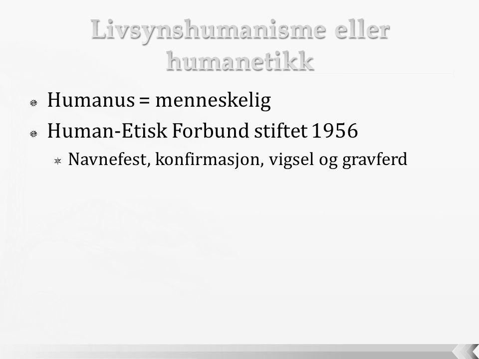 Livsynshumanisme eller humanetikk