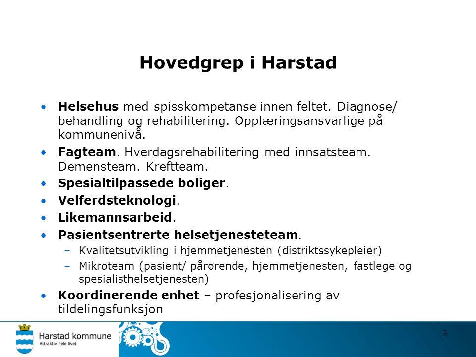 Hovedgrep i Harstad Helsehus med spisskompetanse innen feltet. Diagnose/ behandling og rehabilitering. Opplæringsansvarlige på kommunenivå.