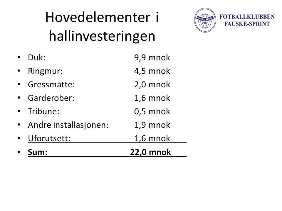 Hovedelementer i hallinvesteringen