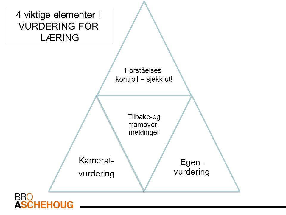 4 viktige elementer i VURDERING FOR LÆRING Kamerat- Egen-vurdering