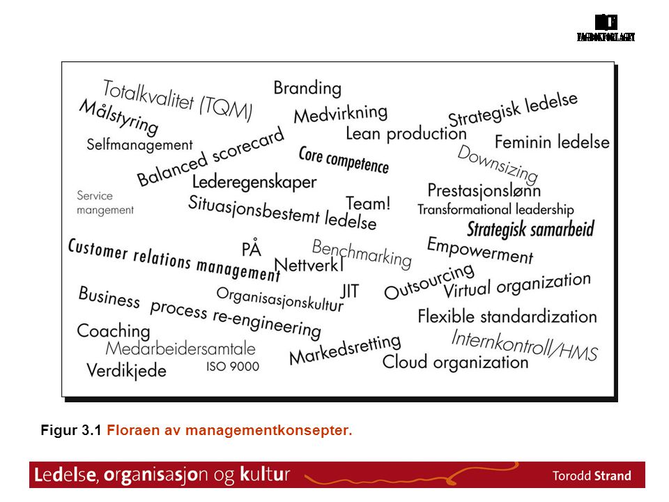 Figur 3.1 Floraen av managementkonsepter.