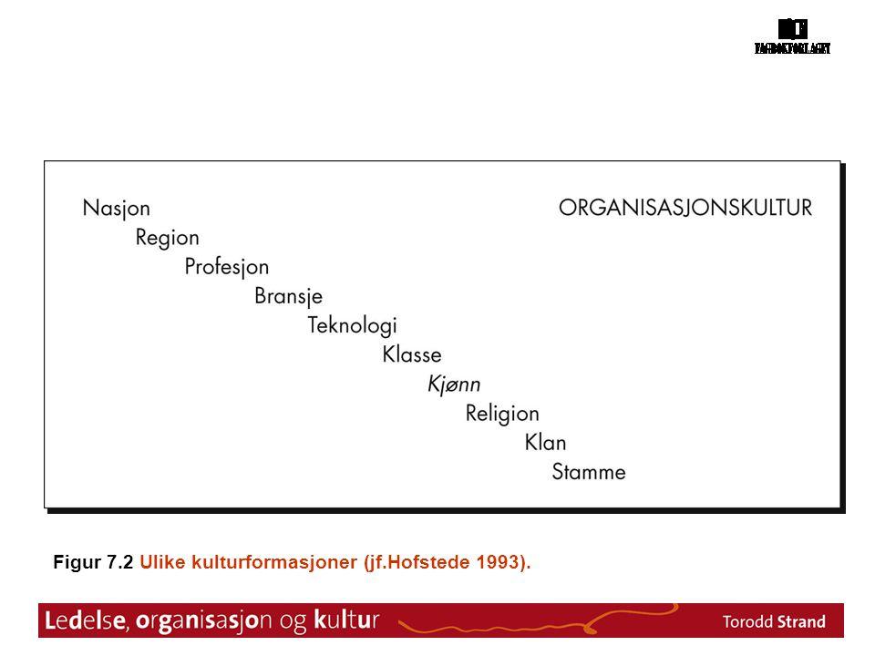 Figur 7.2 Ulike kulturformasjoner (jf.Hofstede 1993).