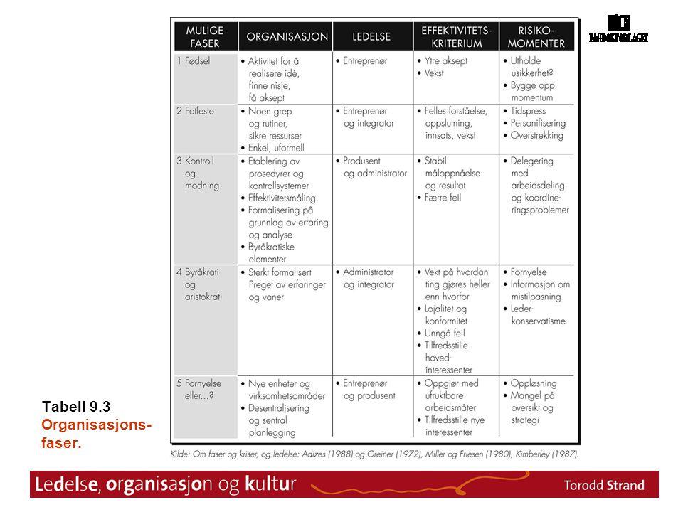 Tabell 9.3 Organisasjons-faser.