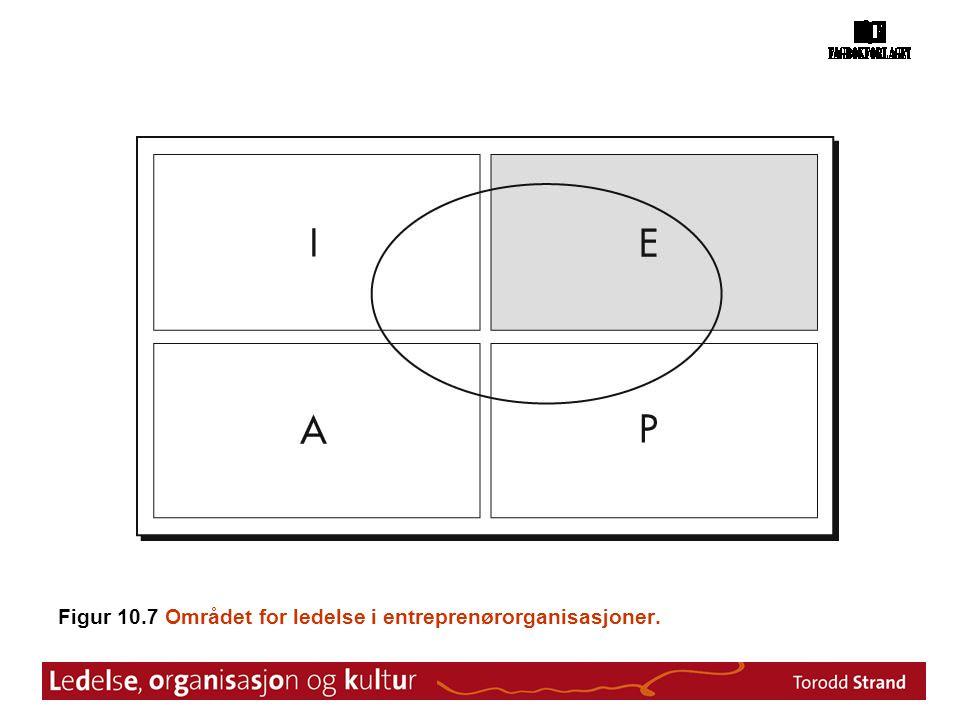 Figur 10.7 Området for ledelse i entreprenørorganisasjoner.