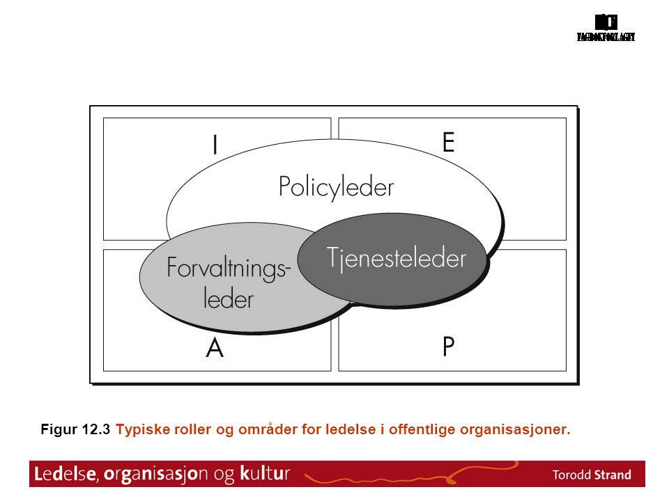 Figur 12.3 Typiske roller og områder for ledelse i offentlige organisasjoner.