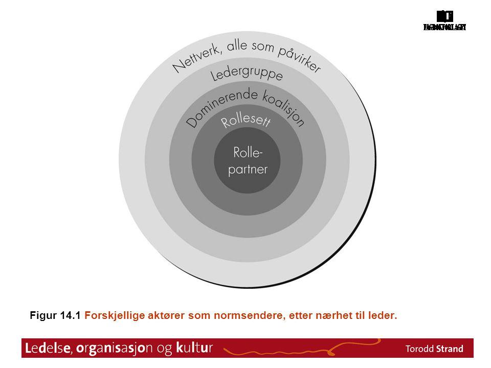 Figur 14.1 Forskjellige aktører som normsendere, etter nærhet til leder.