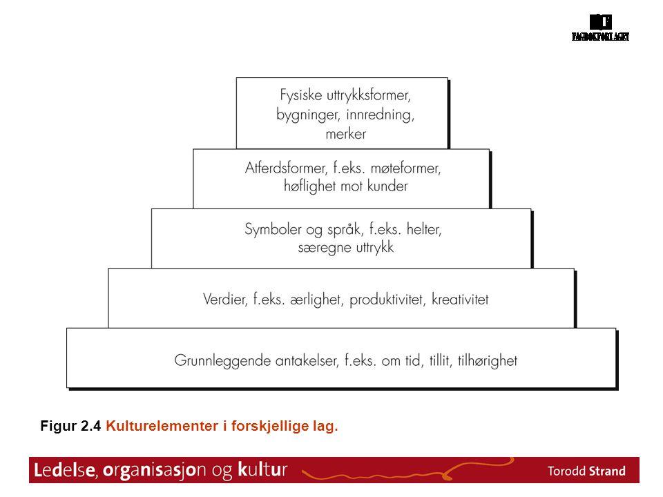 Figur 2.4 Kulturelementer i forskjellige lag.