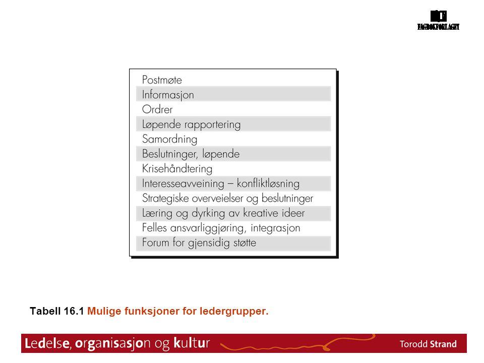Tabell 16.1 Mulige funksjoner for ledergrupper.