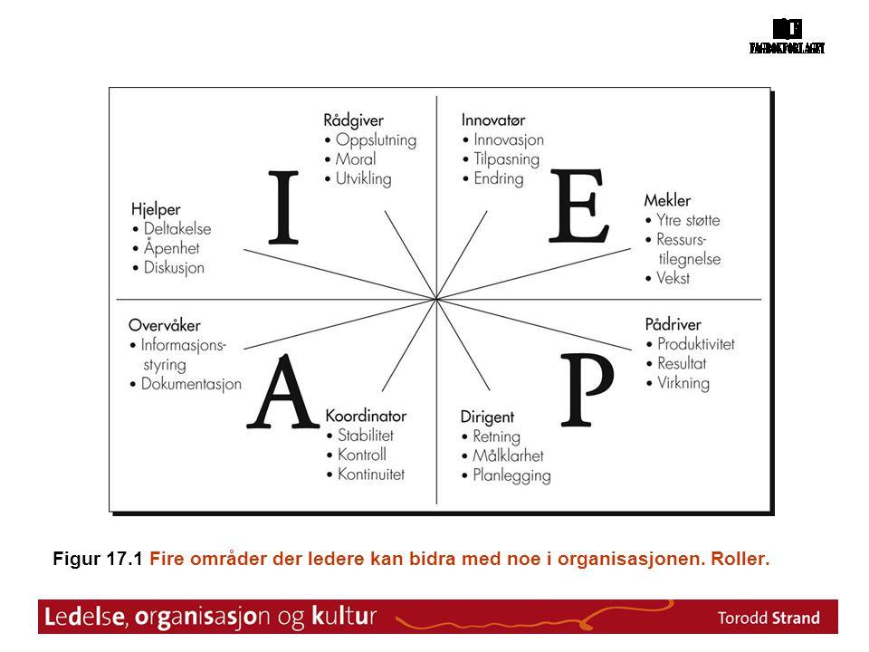 Figur 17. 1 Fire områder der ledere kan bidra med noe i organisasjonen