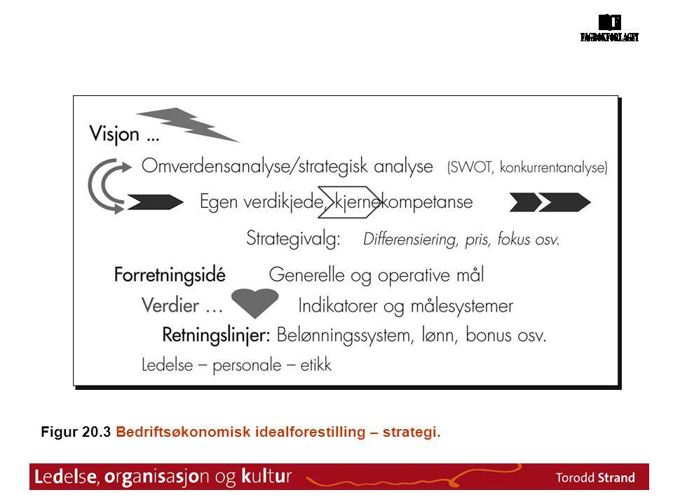 Figur 20.3 Bedriftsøkonomisk idealforestilling – strategi.