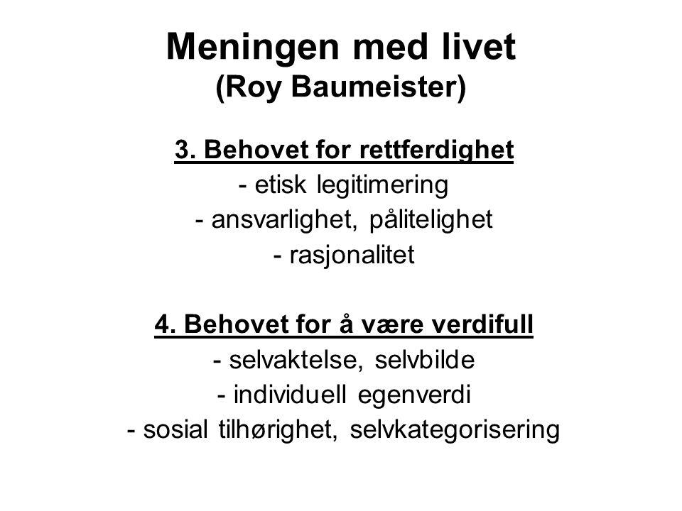 Meningen med livet (Roy Baumeister)