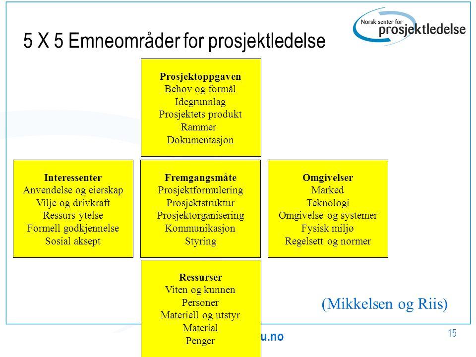 5 X 5 Emneområder for prosjektledelse