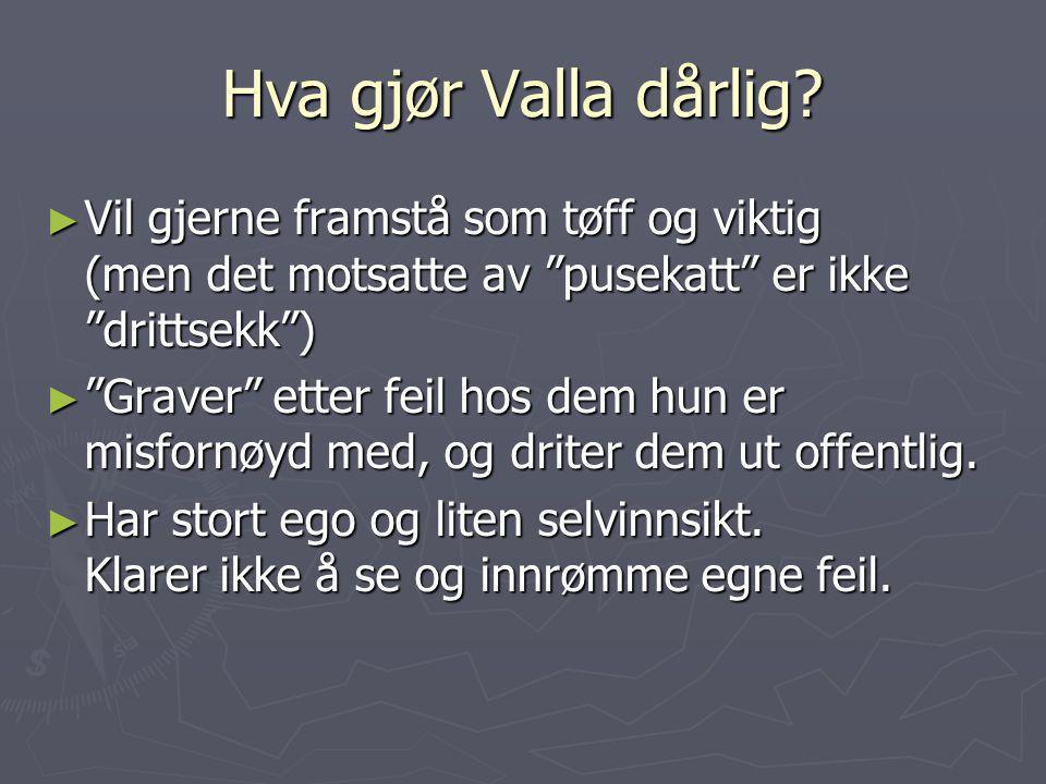 Hva gjør Valla dårlig Vil gjerne framstå som tøff og viktig (men det motsatte av pusekatt er ikke drittsekk )