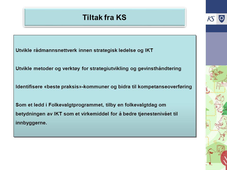 Tiltak fra KS Utvikle rådmannsnettverk innen strategisk ledelse og IKT