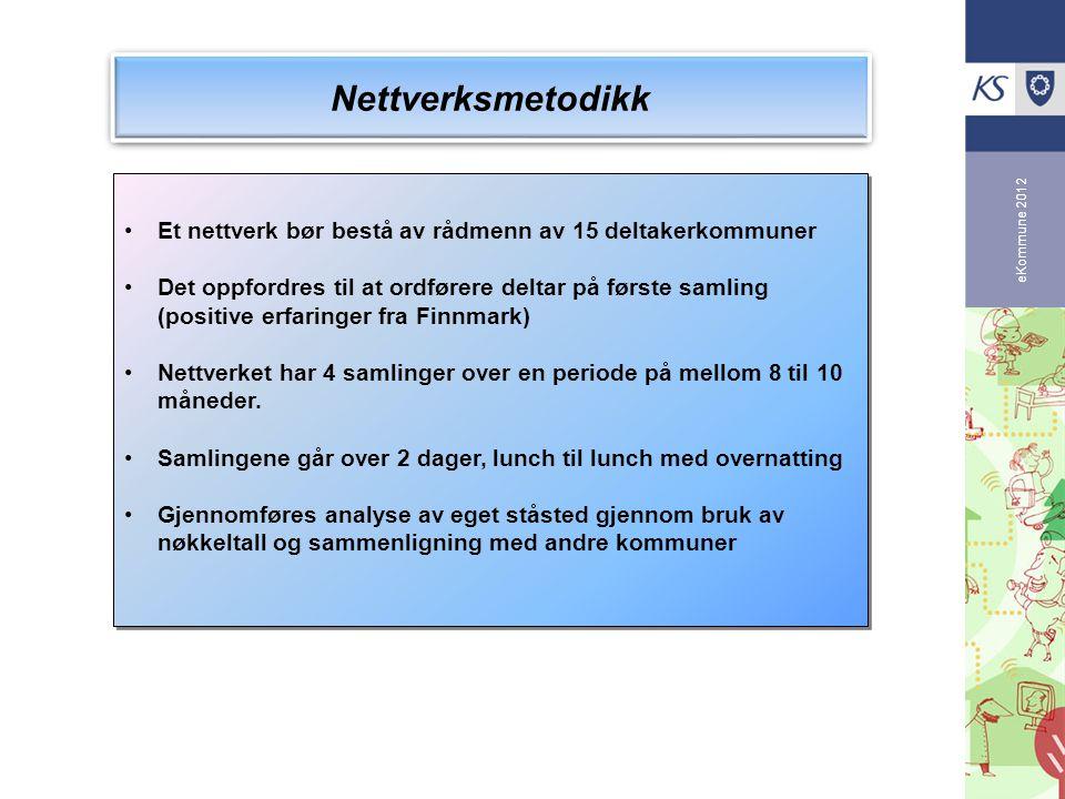 Nettverksmetodikk Et nettverk bør bestå av rådmenn av 15 deltakerkommuner.