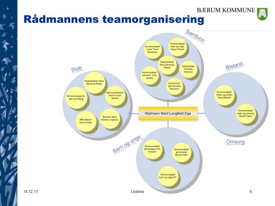 Rådmannens teamorganisering