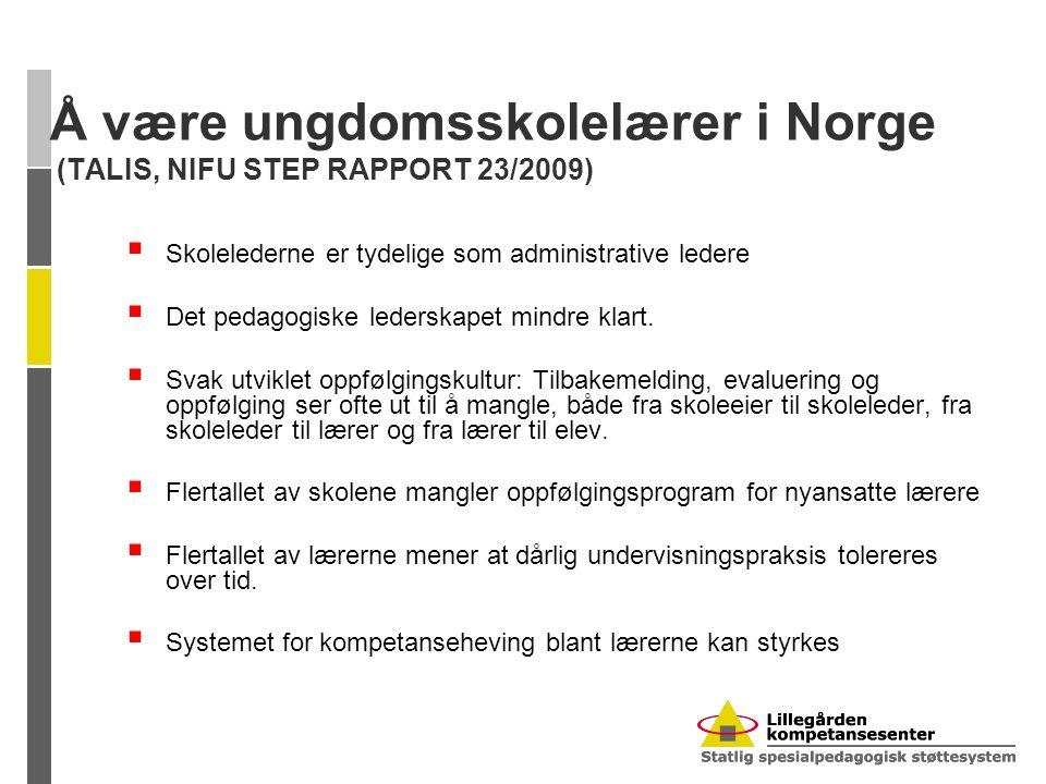 Å være ungdomsskolelærer i Norge (TALIS, NIFU STEP RAPPORT 23/2009)