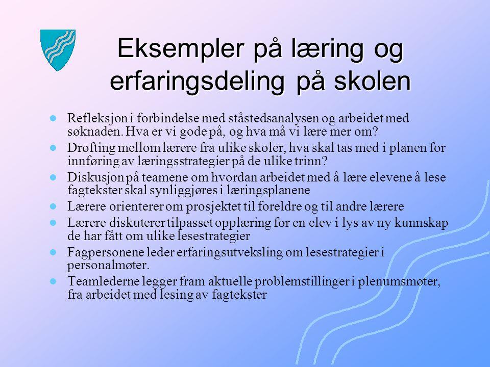 Eksempler på læring og erfaringsdeling på skolen