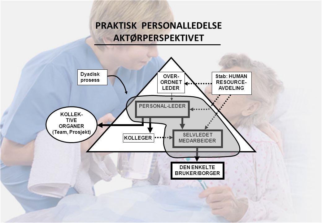 PRAKTISK PERSONALLEDELSE AKTØRPERSPEKTIVET