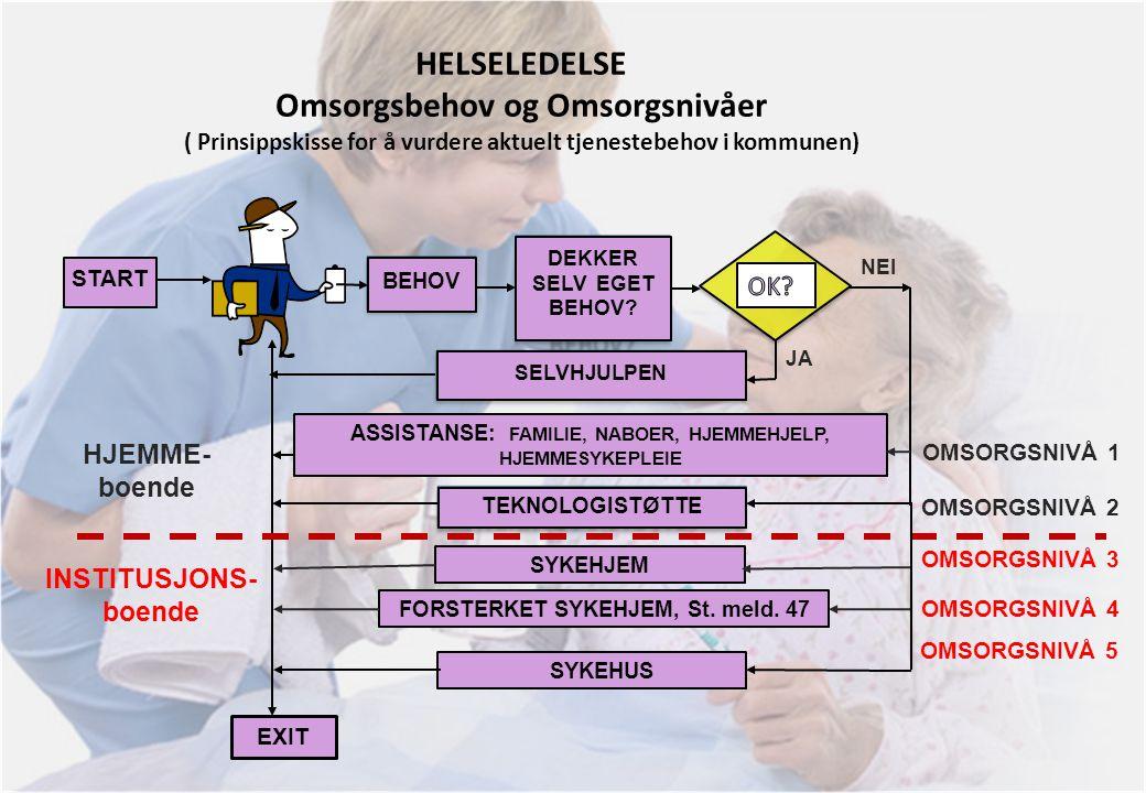 7. april 2010 HELSELEDELSE Omsorgsbehov og Omsorgsnivåer ( Prinsippskisse for å vurdere aktuelt tjenestebehov i kommunen)
