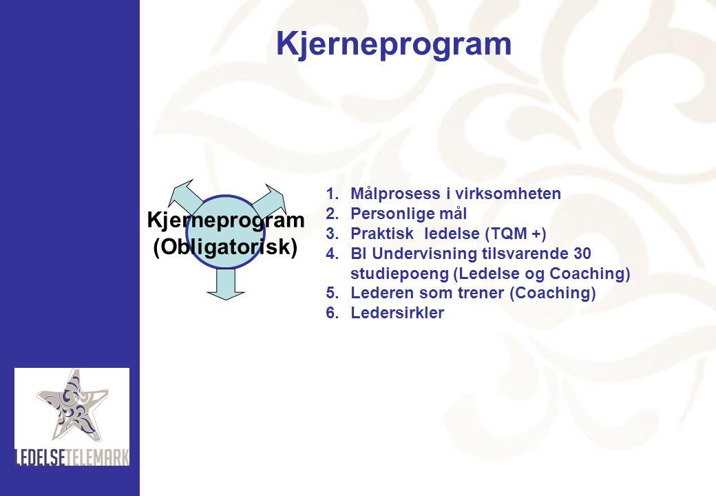 Kjerneprogram Kjerneprogram (Obligatorisk) Målprosess i virksomheten