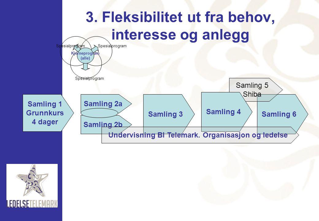 3. Fleksibilitet ut fra behov, interesse og anlegg