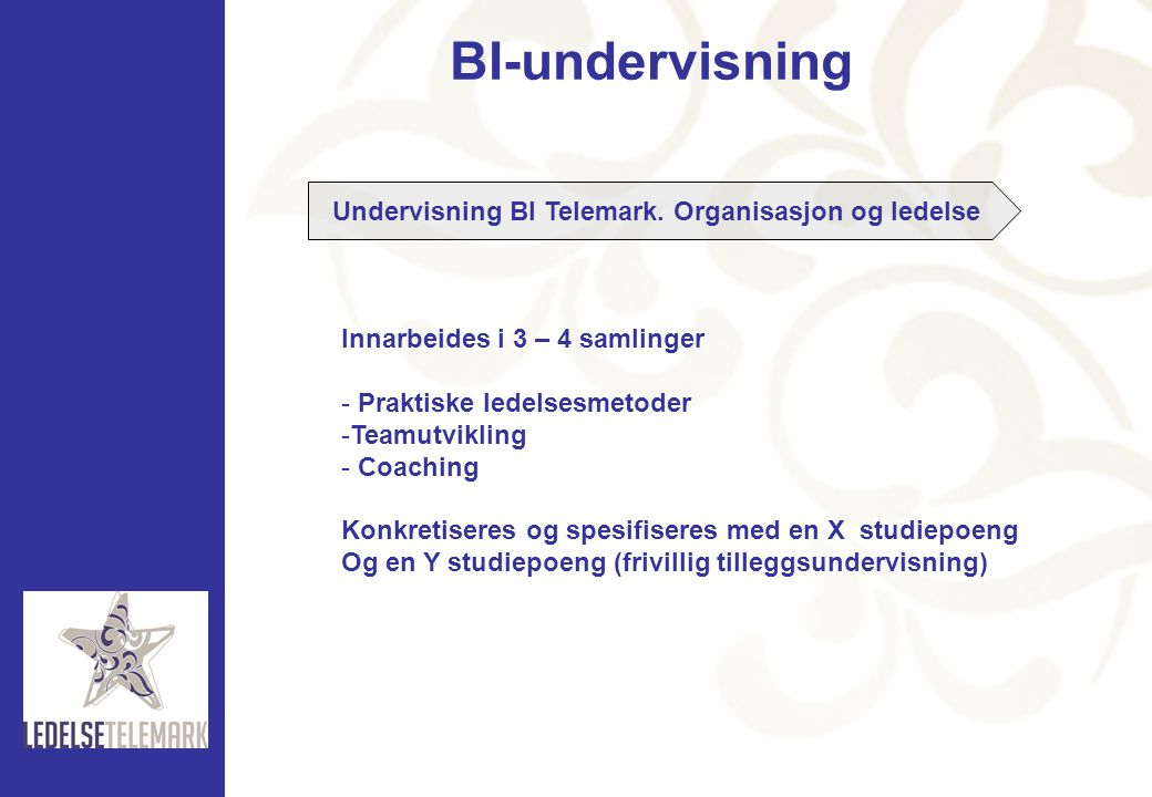 Undervisning BI Telemark. Organisasjon og ledelse