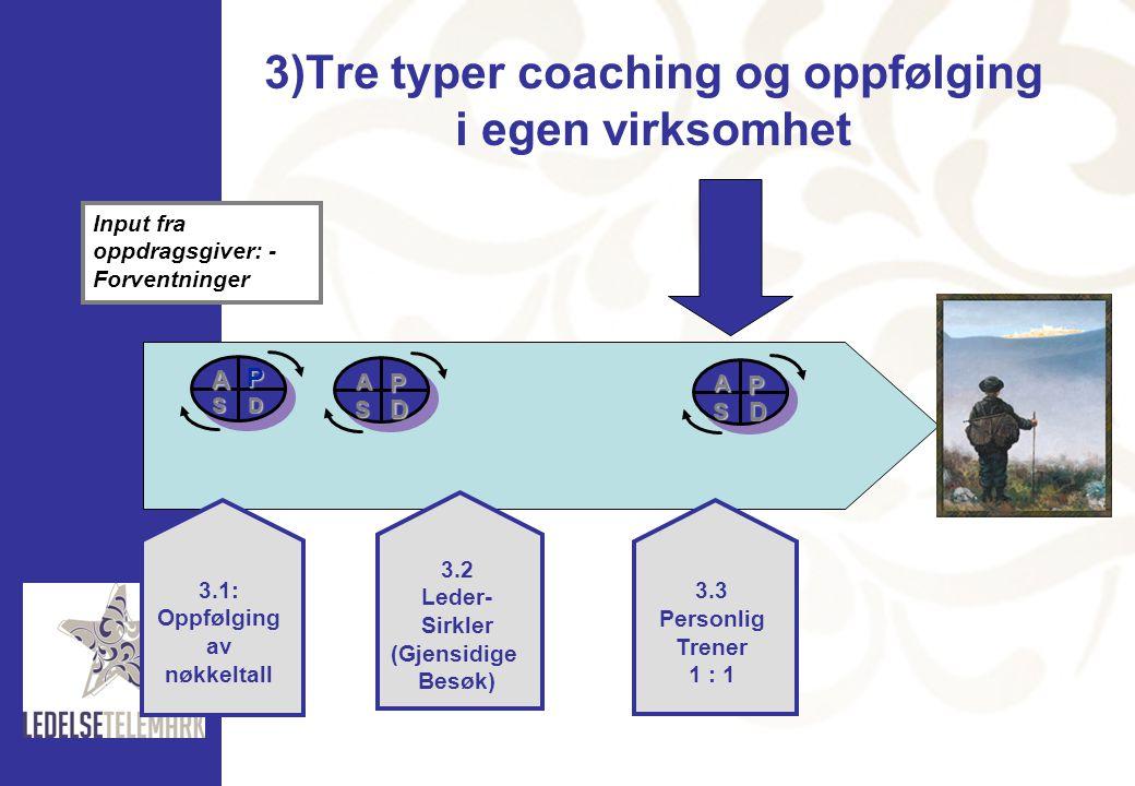 3)Tre typer coaching og oppfølging i egen virksomhet